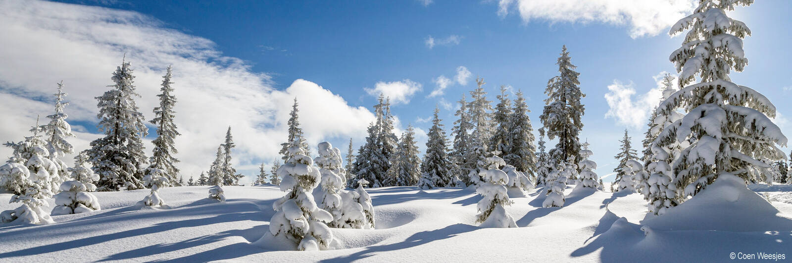 Winterurlaub in Premium Wanderhotels